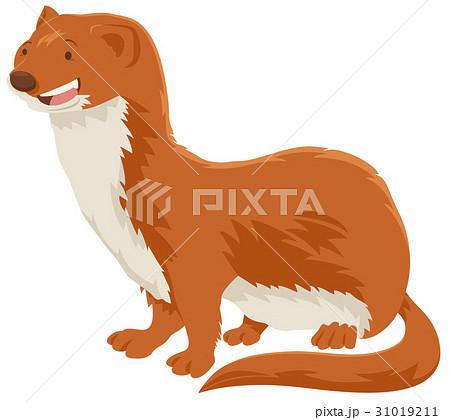 Weasel Cartoon Animal Characterのイラスト素材 31019211 Pixta