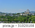 姫路城 天守閣 城の写真 31020108