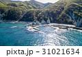 空撮 青森県下北半島 仏ヶ浦 31021634