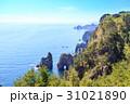 三陸復興国定公園 岩手県北山崎 断崖絶壁の風景 31021890