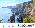 三陸復興国定公園 岩手県北山崎 断崖絶壁の風景 31021907