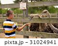 えさ 餌 農園の写真 31024941