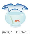 金魚鉢 31026756