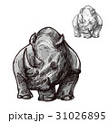 Rhino animal isolated sketch of african rhinoceros 31026895