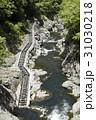 白丸ダム 魚道 多摩川の写真 31030218