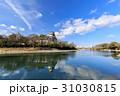 岡山城 烏城 金烏城の写真 31030815