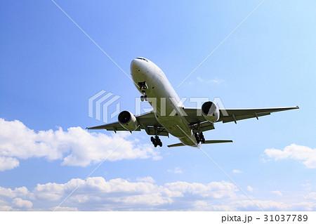 飛行機と青空 31037789