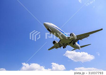 飛行機と青空 31037793
