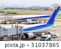 飛行機と梅田の高層ビル群 -大阪国際空港- 31037865