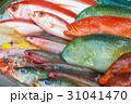 海水魚 魚 食材の写真 31041470