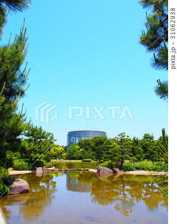 稲毛海浜公園五月の美しい新緑 31062938