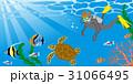 スキューバダイビング 男性 海中のイラスト 31066495
