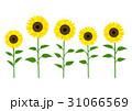 ひまわり 向日葵 花のイラスト 31066569
