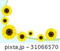 ひまわり フレーム 31066570