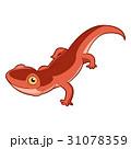 Cartoon smiling Newt 31078359