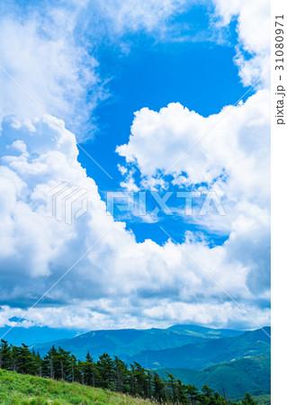 【長野県】山の自然風景【夏】 31080971