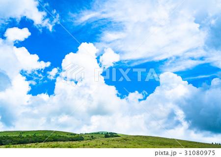 【長野県】山の自然風景【夏】 31080975