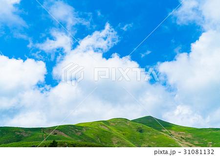 【長野県】山の自然風景【夏】 31081132
