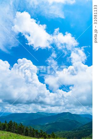 【長野県】山の自然風景【夏】 31081133