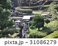 日本庭園 31086279