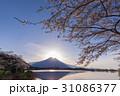 イヤモンド富士 桜 31086377