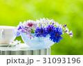 花瓶の花 ヤグルマギクとアリウム 31093196