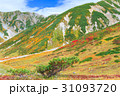 紅葉 室堂 山岳の写真 31093720