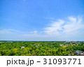 長生村 風景 新緑の写真 31093771