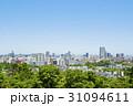 仙台市全景 31094611