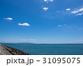 徳島県徳島市マリンピア北緑地から紀伊水道、淡路島を望む 31095075