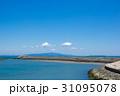 徳島県徳島市マリンピア北緑地から紀伊水道、淡路島を望む 31095078