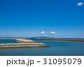 徳島県徳島市マリンピア北緑地から紀伊水道、淡路島を望む 31095079