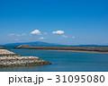 徳島県徳島市マリンピア北緑地から紀伊水道、淡路島を望む 31095080