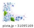 紫陽花 水彩 フレーム 31095169