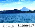 鹿児島県池田湖 31099417