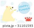 白クマとカニの暑中見舞い 背景なし 31101593