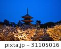 仁和寺の夜桜 31105016