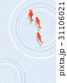 水紋 波紋 金魚のイラスト 31106021