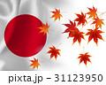 日本  国旗 紅葉 背景  31123950
