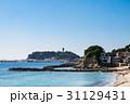 ビーチ 江の島 海岸の写真 31129431