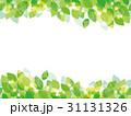 葉 若葉 新緑のイラスト 31131326