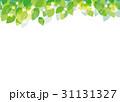 葉 若葉 新緑のイラスト 31131327