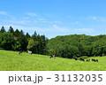 大地 牛 北海道の写真 31132035