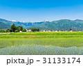 安曇野 春 田園風景の写真 31133174