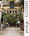 三島神社の薫蓋樟(大阪府門真市) 31133343