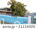 稗島のくす(大阪府門真市) 31134000