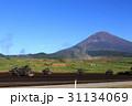 富士総合火力演習 31134069