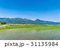 安曇野 春 田園風景の写真 31135984