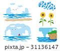 夏 ベクター 海のイラスト 31136147