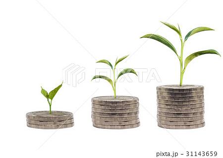 Trees growing on pile of coins moneyの写真素材 [31143659] - PIXTA